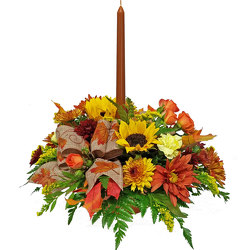 Give Thanks Centerpiece from your local Clinton,TN florist, Knight's Flowers