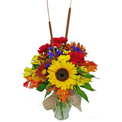 Fall Festival Bouquet from your local Clinton,TN florist, Knight's Flowers