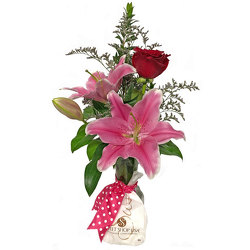 Rose & Chocolate Bud Vase from your local Clinton,TN florist, Knight's Flowers
