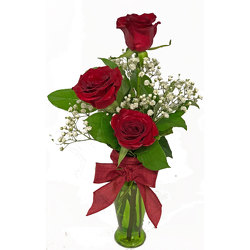 Striking Roses in Bud Vase from your local Clinton,TN florist, Knight's Flowers