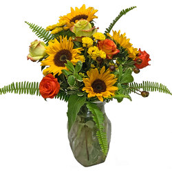 Sunflower Siesta from your local Clinton,TN florist, Knight's Flowers