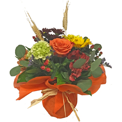 Autumn Spice from your local Clinton,TN florist, Knight's Flowers