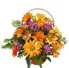 Crazy Daisy Basket from your Clinton, TN florist