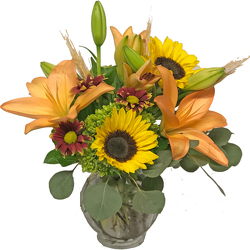 Harvest Festival from your local Clinton,TN florist, Knight's Flowers