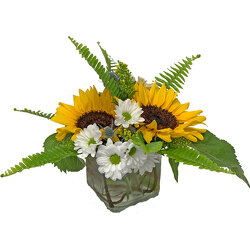 Appalachian Suntrise from your local Clinton,TN florist, Knight's Flowers