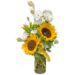 Sunflower Festival from your local Clinton,TN florist, Knight's Flowers