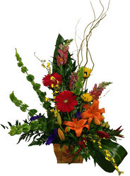 Simply Elegant from your local Clinton,TN florist, Knight's Flowers