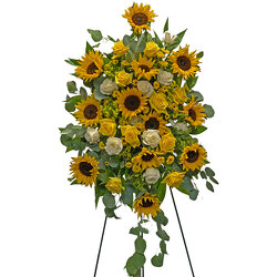 Graceful Sunflower Spray from your local Clinton,TN florist, Knight's Flowers