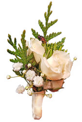 Wild Romance Boutonniere-Ivory  from your local Clinton,TN florist, Knight's Flowers
