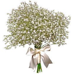Baby's Breath Bouquet from your local Clinton,TN florist, Knight's Flowers
