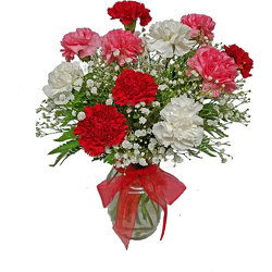 Dozen Carnations Arranged  from your local Clinton,TN florist, Knight's Flowers