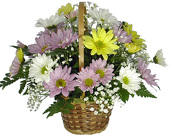 Everyday Basket from your Clinton, TN florist