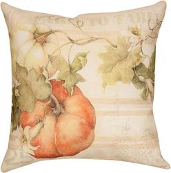 Pumpkin Pillow from your local Clinton,TN florist, Knight's Flowers