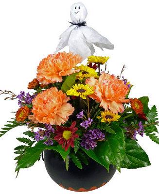 Click Here For Larger Image  sc 1 st  Clinton Florist  Oak Ridge Florist  Knoxville Flowers  Clinton ... & Clinton Florist :: Oak Ridge Florist :: Knoxville Flowers :: Clinton ...