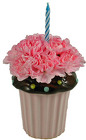 Cupcake Surprise from your Clinton, TN florist