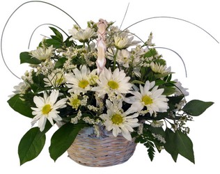 Daisy Basket from your local Clinton,TN florist, Knight's Flowers
