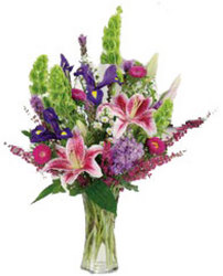 Stargazer Garden from your local Clinton,TN florist, Knight's Flowers