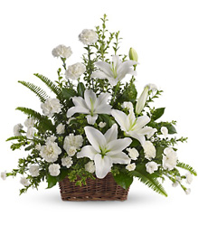 Peaceful White Lilies Basket from your local Clinton,TN florist, Knight's Flowers
