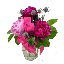 Peonies, Pretty Please from your local Clinton,TN florist, Knight's Flowers